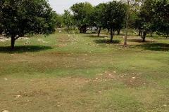Foto de rancho en venta en  , sitpach, mérida, yucatán, 3725806 No. 01