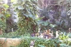 Foto de terreno comercial en venta en  , solidaridad, othón p. blanco, quintana roo, 1147957 No. 01