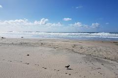 Foto de terreno habitacional en venta en sonora 01, miramar, playas de rosarito, baja california, 4426785 No. 08