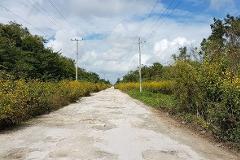 Foto de terreno industrial en venta en  , supermanzana 117, benito juárez, quintana roo, 0 No. 01