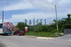 Foto de terreno comercial en venta en  , supermanzana 77, benito juárez, quintana roo, 2602544 No. 01