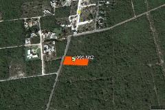Foto de terreno habitacional en venta en  , tamanché, mérida, yucatán, 4213474 No. 01