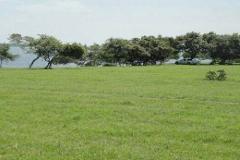 Foto de terreno habitacional en venta en  , tampico, tampico, tamaulipas, 3524249 No. 01