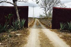 Foto de rancho en venta en telchac 0, telchac, telchac pueblo, yucatán, 3224349 No. 02