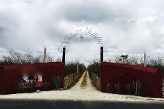 Foto de terreno habitacional en venta en  , telchac, telchac pueblo, yucatán, 3230271 No. 01