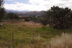 Foto de terreno habitacional en venta en  , tepetlaoxtoc de hidalgo, tepetlaoxtoc, méxico, 2619416 No. 01