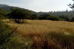 Foto de terreno habitacional en venta en  , tepetlaoxtoc de hidalgo, tepetlaoxtoc, méxico, 3982069 No. 01