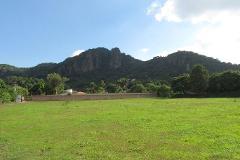 Foto de terreno habitacional en venta en  , tepoztlán centro, tepoztlán, morelos, 1192053 No. 01