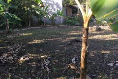 Foto de terreno habitacional en venta en tercera del monal , gaviotas sur sección san jose, centro, tabasco, 0 No. 01