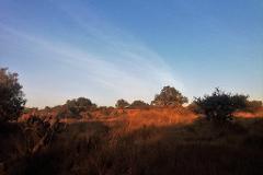 Foto de terreno habitacional en venta en terreno 68 , huehuetoca, huehuetoca, méxico, 3983207 No. 01