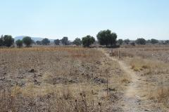 Foto de terreno habitacional en venta en texcoco 100, la nopalera 2a. sección tulpetlac, ecatepec de morelos, méxico, 2650394 No. 01