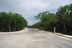 Foto de terreno habitacional en venta en  , tulum centro, tulum, quintana roo, 4672036 No. 01