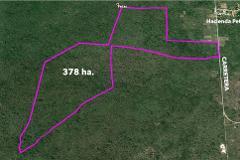 Foto de terreno habitacional en venta en  , tzacala, mérida, yucatán, 4555026 No. 01