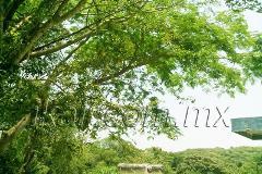 Foto de terreno comercial en renta en carretera tuxpan-tampico , universitaria, tuxpan, veracruz de ignacio de la llave, 2707078 No. 01