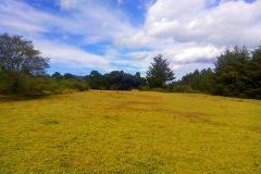 Foto de terreno habitacional en venta en  , villa del carbón, villa del carbón, méxico, 3267538 No. 01