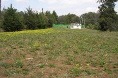 Foto de terreno habitacional en venta en  , villa del carbón, villa del carbón, méxico, 3269808 No. 01
