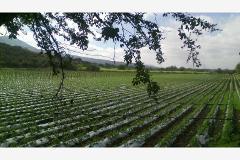 Foto de terreno comercial en venta en x x, emiliano zapata, cuernavaca, morelos, 4590140 No. 01