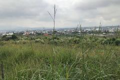 Foto de terreno habitacional en venta en x x, lomas de ahuatepec, cuernavaca, morelos, 0 No. 01