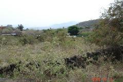 Foto de terreno habitacional en venta en xolatlaco 21, tepoztlán centro, tepoztlán, morelos, 3027861 No. 01