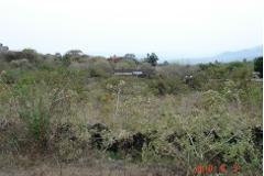 Foto de terreno habitacional en venta en xolatlaco , tepoztlán centro, tepoztlán, morelos, 0 No. 01