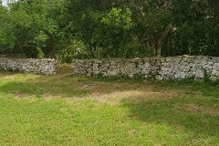 Foto de terreno habitacional en venta en  , yaxche, mérida, yucatán, 0 No. 01