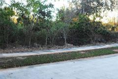 Foto de terreno habitacional en venta en  , yucatan, mérida, yucatán, 3245683 No. 01