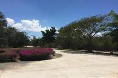 Foto de terreno habitacional en venta en  , yucatan, mérida, yucatán, 4489226 No. 01