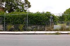 Foto de terreno habitacional en venta en zapote 0, águila, tampico, tamaulipas, 3499306 No. 01