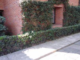 Foto de departamento en venta en Barrio del Niño Jesús, Tlalpan, DF / CDMX, 14693677,  no 01