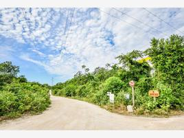 Foto de terreno habitacional en venta en 1 1, akumal, tulum, quintana roo, 0 No. 01