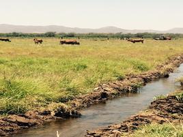 Foto de rancho en venta en  , 15