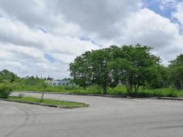 Foto de terreno habitacional en venta en 187 j 739, santa cruz palomeque, mérida, yucatán, 0 No. 01