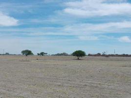 Foto de terreno industrial en venta en Aguascalientes 2000, Aguascalientes, Aguascalientes, 17258036,  no 01