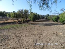 Foto de terreno habitacional en venta en 20 de noviembre , san diego metepec, tlaxcala, tlaxcala, 0 No. 01