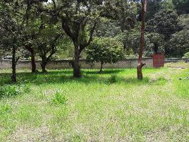 Foto de terreno comercial en venta en 2da. avenida norte poniente , el campo, yajalón, chiapas, 14209581 No. 01