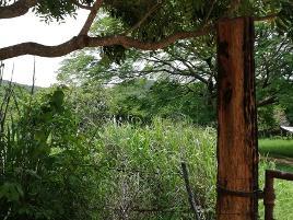 Foto de terreno comercial en venta en 3 kilometro al oriente de rosendo salazar , cáp. rosendo salazar, cintalapa, chiapas, 0 No. 01
