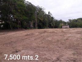 Foto de terreno comercial en venta en Bahía de Banderas, Bahía de Banderas, Nayarit, 17353584,  no 01