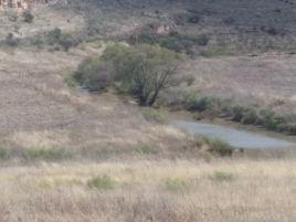 Foto de rancho en venta en Teul de Gonzalez Ortega, Teúl de González Ortega, Zacatecas, 5669683,  no 01