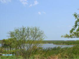 Foto de terreno habitacional en venta en Altamira II, Altamira, Tamaulipas, 14684484,  no 01