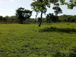 Foto de rancho en venta en Ernesto Zedillo, Campeche, Campeche, 15390628,  no 01