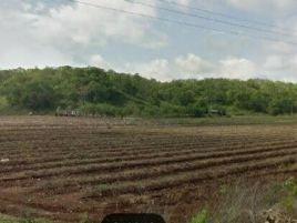 Foto de rancho en venta en Lubna, Campeche, Campeche, 16777302,  no 01