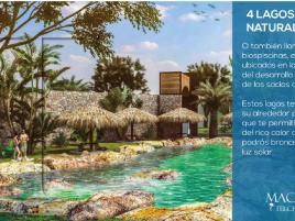 Foto de terreno habitacional en venta en Telchac Puerto, Telchac Puerto, Yucatán, 14946922,  no 01