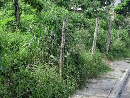 Foto de terreno habitacional en venta en Lázaro Cárdenas, Campeche, Campeche, 16887510,  no 01