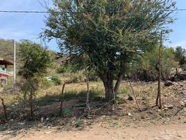 Foto de terreno comercial en venta en 5 de mayo 1, el molino, jocotepec, jalisco, 0 No. 01