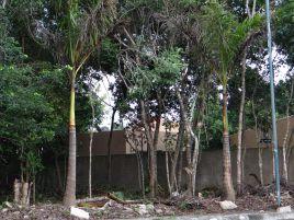 Foto de terreno comercial en venta en Los Arrecifes, Solidaridad, Quintana Roo, 21108045,  no 01