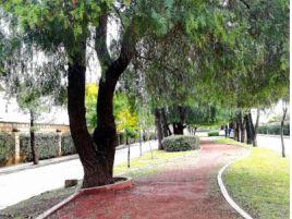 Foto de casa en renta en Rancho Santa Mónica, Aguascalientes, Aguascalientes, 15806172,  no 01