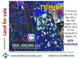 Foto de terreno comercial en venta en 5a. avenida , region 15 kukulcan, tulum, quintana roo, 0 No. 01