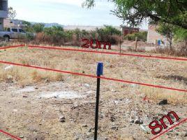 Foto de terreno habitacional en venta en Arboledas, Tlaltenango de Sánchez Román, Zacatecas, 15114105,  no 01