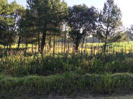Foto de terreno habitacional en venta en El Arcángel, Santa Cruz Tlaxcala, Tlaxcala, 6753073,  no 01