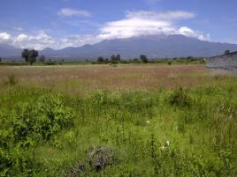 Foto de terreno industrial en venta en Santa María Moyotzingo, San Martín Texmelucan, Puebla, 13329223,  no 01